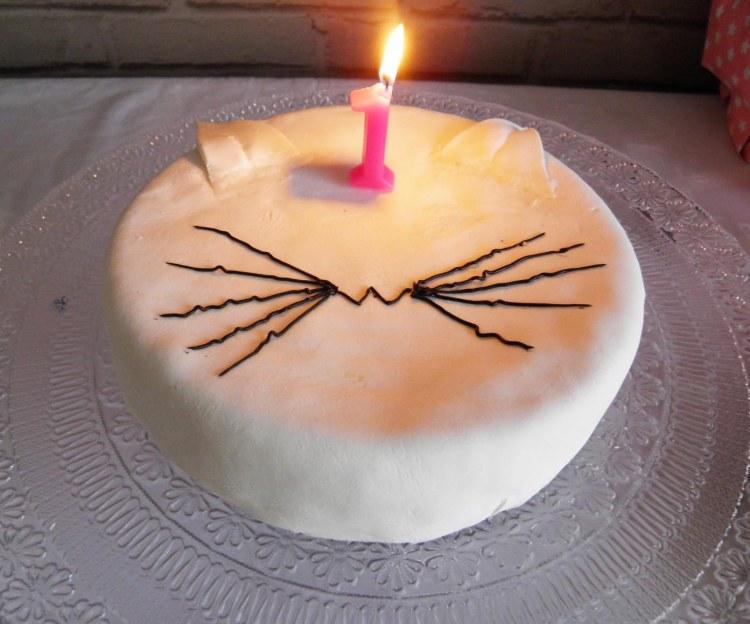 anniversaire-1-an-enfant-theme-chat
