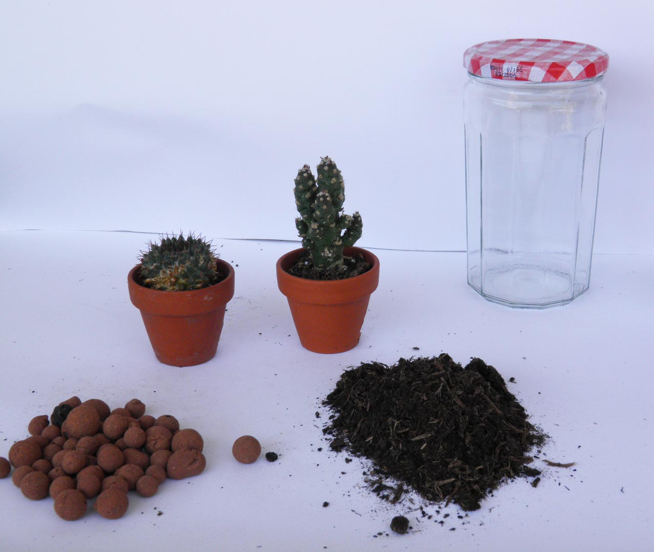 diy 14 un terrarium pour la f te des p res norma wallace lifestyle. Black Bedroom Furniture Sets. Home Design Ideas