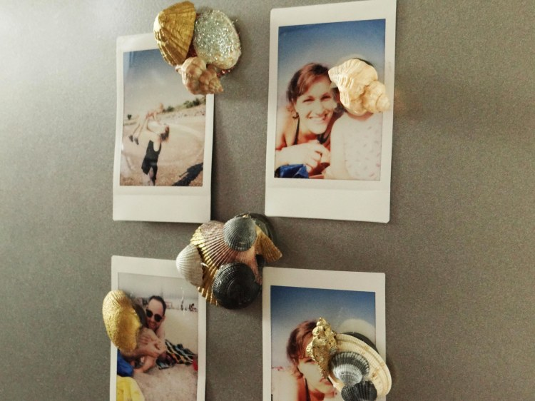 diy-magnets-coquillage-1
