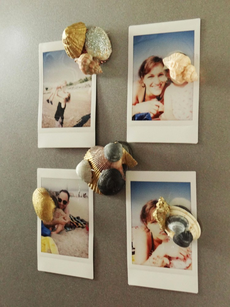 diy-magnets-coquillage-2